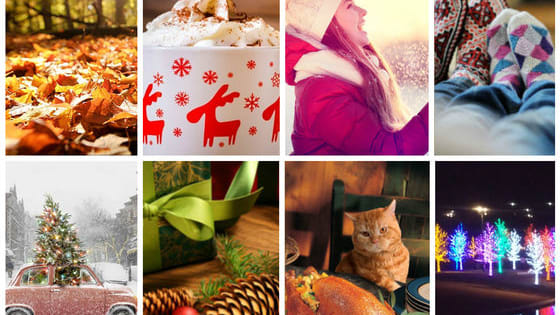 The world may seem chaotic right now, but Thanksgiving is coming up soon. This calming, colorful quiz will show you what you have to be thankful for this holiday season.