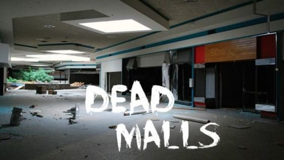 Unfortunately, since the mid 90s, chances are you have witnessed at least one shopping mall meet its fate or slowly but surely inch towards its future doom. I must say that personally, I am a mall person. I LOVE malls. Yes, I was born since we hit the year 2000, and I would be devastated to see all of our malls dry up someday.  Below you will read a list of the most desperate dying, (or already dead) shopping malls in the U.S.A.