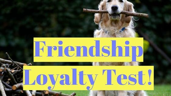Your answer to these situations will tell us how much of a  loyal friend you are.