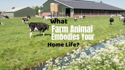 How you spend your time at home is similar to how typical farm animals like to spend theirs. Find out which farm animal embodies your home life by taking this quiz.