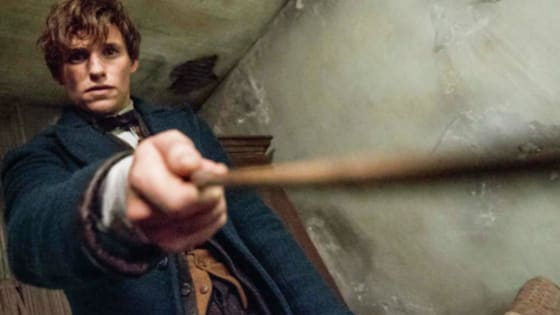 Fantastic Beast and Where to Find them makes its debut on November 18th, and if you're like us, YOU CAN'T WAIT TO  SEE THIS MOVIE!  Red Carpet Fly has put together several reasons why muggles/no-majs should be lining up to purchase their tickets.