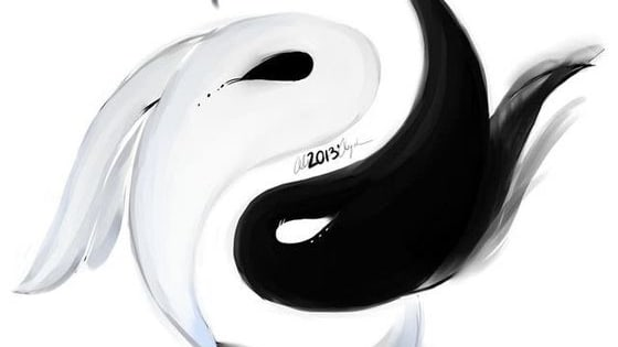 Feminine, Masculine, black, white, night, day... What is your personnality according to the Yin and Yang ?