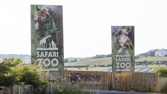 The South Lakes Safari Zoo in Cumbria, UK has finally lost its license after losing 486 animals between 2013 and 2017 and one zookeeper who got mauled by a tiger. Find out more here.