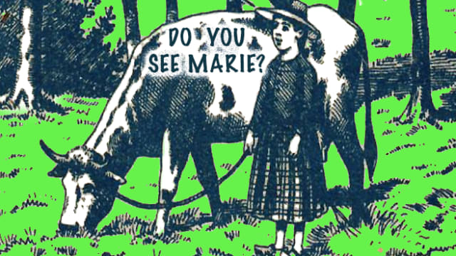 Marie is lost in the woods. Do you see Marie?