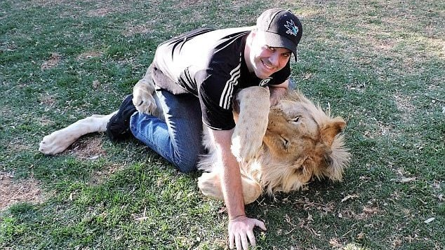"""Illinois resident Ted Papastefan, an avid animal enthusiast who has had several encounters with lions in the past, finally got to play with one in South Africa. According to Ted, the """"light mauling"""" was worth it, but what do you think?"""