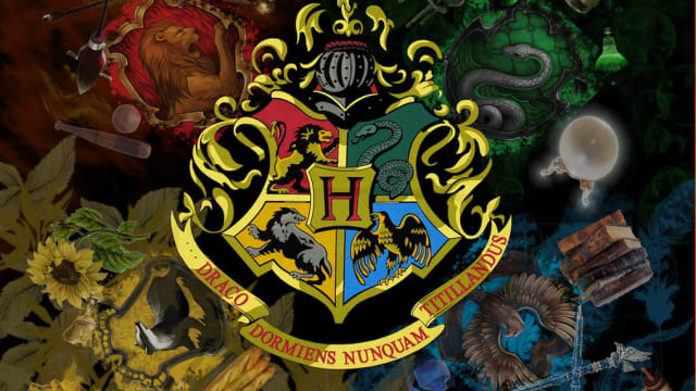Nows the day you put on that sorting hat and discover which house you belong to!