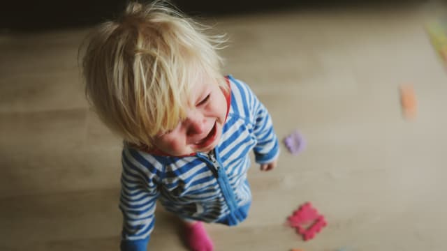 """""""No"""" seems to be the dominant word in a toddler's vocabulary when they hit two. The terrible twos are full of tantrums and public meltdowns, but parents can learn to get past them. Here are some tips to help you deal with this stage of child development."""