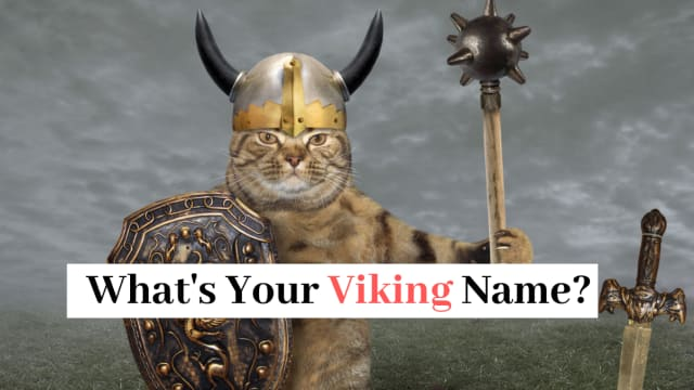 If you were a viking, what would your name be? And what would be your personality type? Take this fun viking quiz to find out!