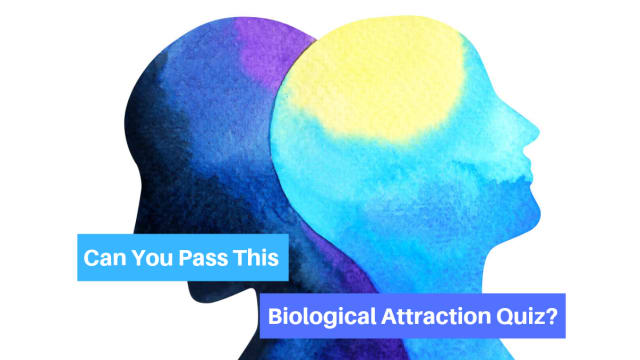 Did you know there are biological factors involved in romantic attraction? Of course it depends on personality and circumstance, but a lot of the time it's science that decides who you're attracted to.