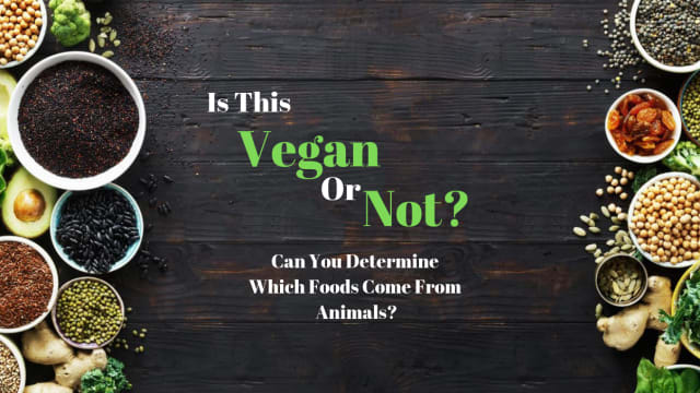 One of the most difficult parts about going vegan is knowing what foods do and do not come from animals. See if you are a vegan expert by taking this vegan quiz!