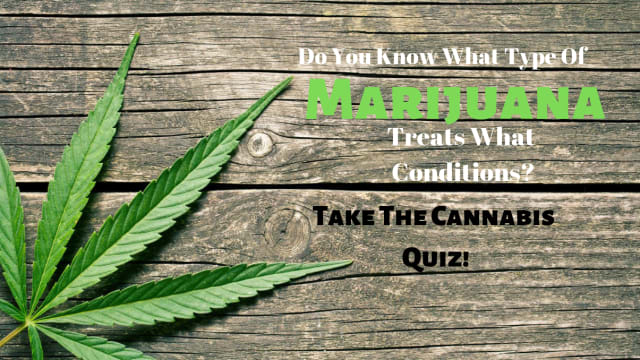 While medical cannabis effects everyone differently, researchers have come to some general guidelines. Find out if you are a marijuana expert by taking the Cannabis Quiz!