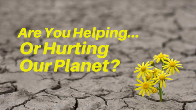 Climate change, pollution, extinction...these words have been buzzing in the media lately. Are you helping or hurting our planet earth? Take this quiz to find out!