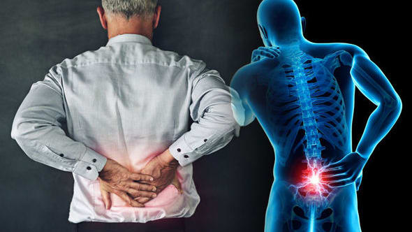 Lower Back Pain ... it is safe to say that you are a sufferer? Do you fit the insights that state over 80% of grown-ups have back torment at some stage. Is it true that you are one of the half who are perusing this with lower back agony at the present time