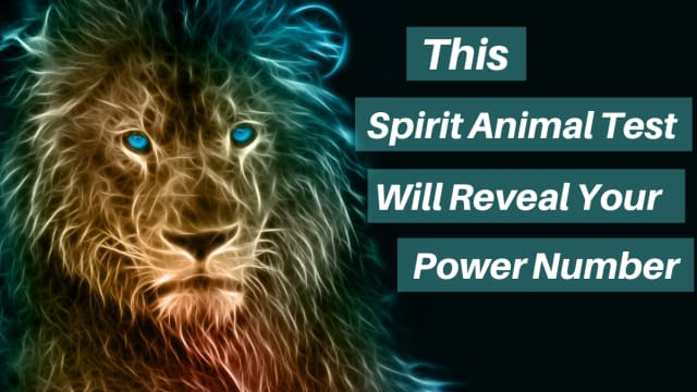 People say that animals have a special connection to the spirit world. Because they're so immersed in nature they can guide towards certain directions in your life as well as give you great advice. They can even tell you your power number!