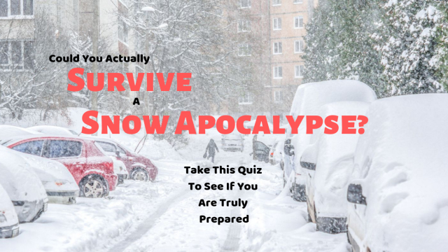 Blizzards and snowstorms are happening in places they never used to before. See if you can survive a snow apocalypse by taking this quiz.