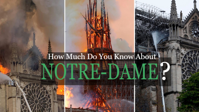 Relive the storied history of this infamous landmark as the world pushes for restoration after the Burning of 2019.