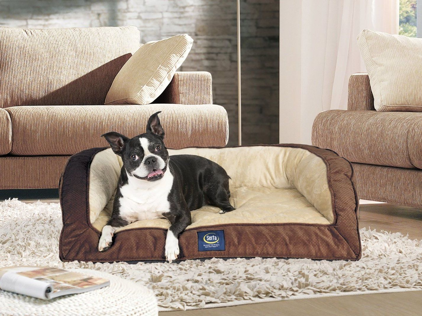 dog bed x supplies foam pet amazon blend petite com memory couch soft serta grey dp