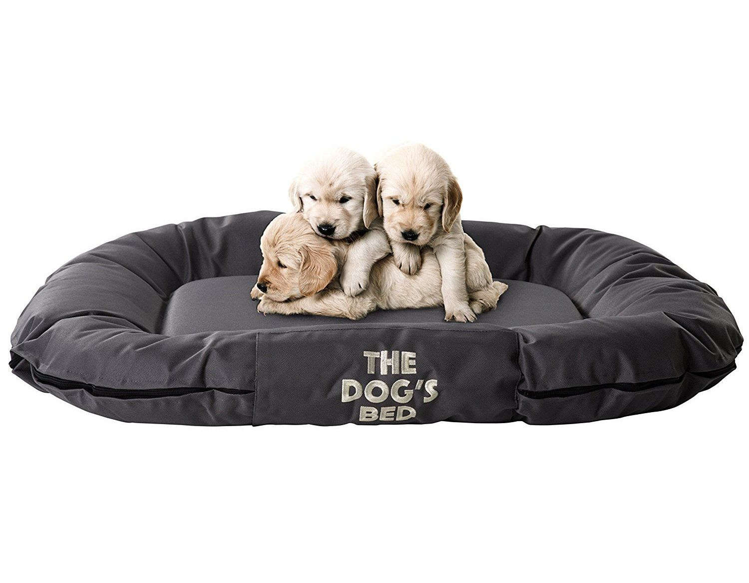 site puppy pet dogs luxury aliexpresscom bed princess buy beds dog small sarahwatson for pink