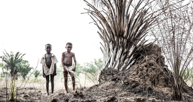 The Story of Togo People BY Gustav Wileit