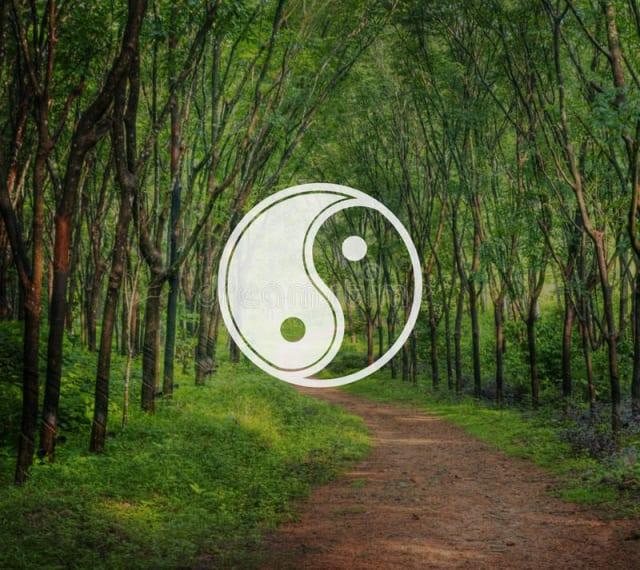"""Suele malinterpretarse como las luchas entre el bien y el mal, pero se trata en realidad de la coexistencia de dos fuerzas opuestas que juntas se complementan. Significan luz (yang) y oscuridad (yin). El concepto se utilizó por primera vez en el siglo VI en un libro no religioso titulado """"el libro de los cambios"""", que narraba preceptos del taoísmo."""