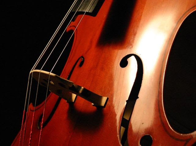 Answer: Cello! Violins are held at the shoulder and much smaller, and a stand-up bass is much bigger!