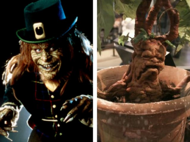 What's scarier? The leprechaun on the left, or the mandrake on the right?