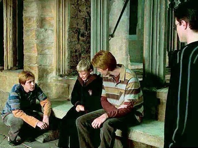 We are, in a case of rare absolute certainty, totally sure that the Weasley twin on the right is George.