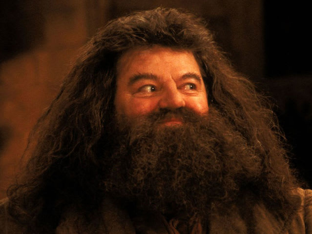 Hagrid was the first official casting choice!