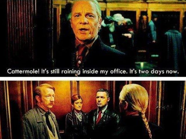 Who was Ron (as Reg Cattermole) told to fetch to stop the rain inside of Yaxley's office?