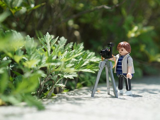 toy photographer