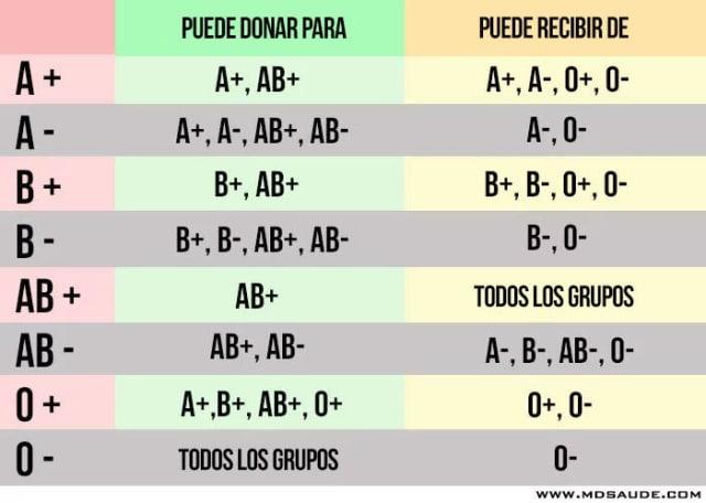 grupo de sangre 0 4 rh negativo