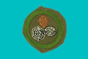 To acquire a badge in Nut Culture, kids would literally have to culture nuts, like grow nuts and other legumes in their back yards. Fortunately for kids with peanut allergies, this badge was discontinued in 1954.