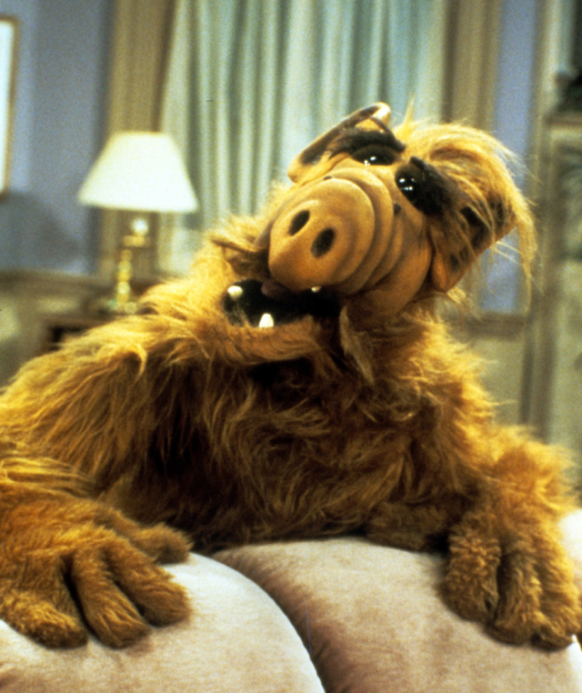 Warners Brothers is reportedly in the stages of redeveloping the classic sitcom ALF. The show ran in the US between 1986 and 1990. The sitcom centred around the character Alien Life Form, shortened to ALF, who lived with a middle class family in California. It was first shown in the UK on ITV in 1987.