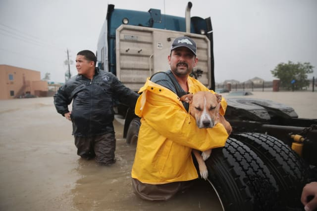 Here, a man takes a moment to rest his large dog on the tire of an 18-wheeler in the process of getting it safely out of the flood.