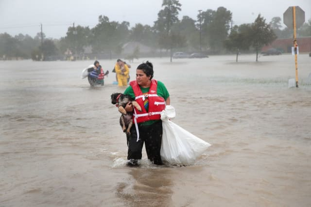 This woman holds her dog tight in one arm high above the water while carrying a trash bag of possessions in the other.