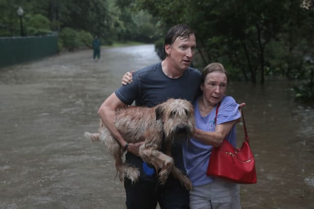 Here, a young man carries a soaking wet dog while supporting an older woman as they brave the flood waters together.