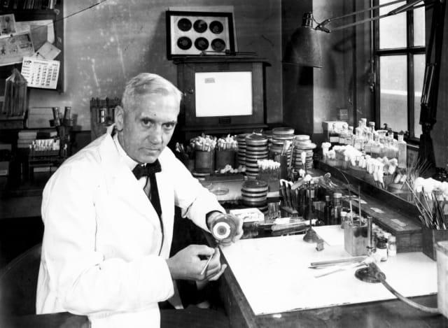 Antes de la penicilina millones de personas morían por heridas infectadas y enfermedades contagiosas como la fiebre escarlata. En 1928 el doctor Alexander Fleming mientras investigaba el virus de la gripe notó que una de sus bacterias estaba infectada con hongos, pues la había dejado afuera sin protección. Tras una inspección más detallada, Fleming notó un anillo claro alrededor del hongo, lo que indicaba que era tóxico para la bacteria estafilococo en el plato. Fleming cuidadosamente aisló el molde, que era del género Penicillium, y nombró su nueva droga maravilla penicilina.