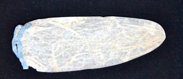 Imagen Referencial del Preservativo Más Caro del Mundo