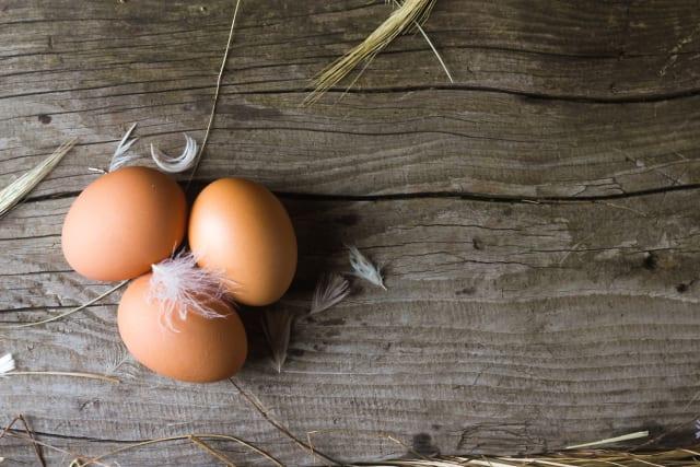 Por mucho que se parezcan, ningún huevo de diferentes especies es igual, ya que su forma dependerá de la capacidad de volar del ave.
