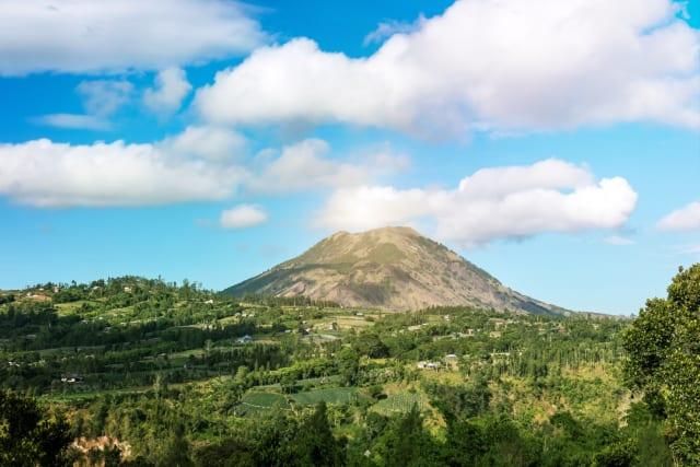 Фото: Artem Bali/Pexels
