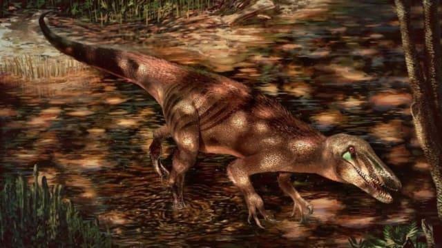 Paleontólogos argentinos y estadounidenses  descubrieron  una nueva especie de dinosaurio, el 'Tratayenia rosalesi',que habitó hace unos 85 millones de años en la actual región argentina de Patagonia.