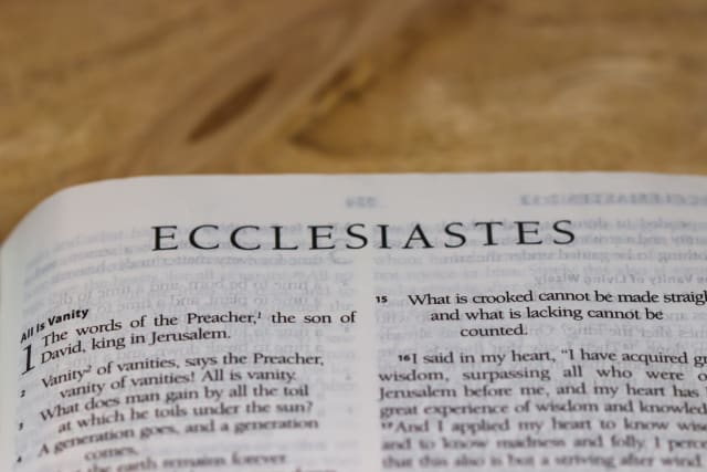 """Vanity of vanities! All is vanity."" The book of Ecclesiastes provides a potent reflection on how this world and all its pleasures are passing away. It reminds us that while we may enjoy this life, it is nothing compared to the life to come."