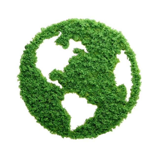 Es importante que se creen iniciativas para que se impulse la cosecha económica y ecológica sustentable que no se deriven de productos madereros, reconociendo que los bosques tropicales y antiguos son recursos no renovables. También hay que exigir a los Gobiernos de los diversos países que se empleen prácticas responsables y supervisadas para que la tala forestal comercial y su reforestación no sean de alto impacto para el planeta.