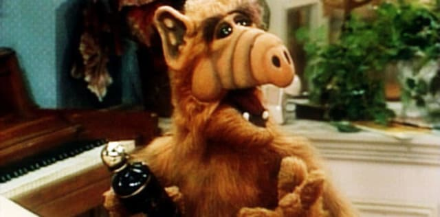El personaje de Alf se pensó como un alienígena zafio y grosero, alejado del estereotipo de alien inteligente y elegante. Dentro de sus costumbres chabacanas -como la de comer gatos- también era un aficionado bebedor y, de hecho, en los primeros episodios aparecía bebiendo alcohol con relativa frecuencia. La NBC pidió a los creadores suavizar el tono para hacer la serie más familiar, y el resgo de bebedor de Alf fue suprimido.