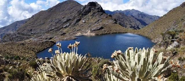 Los páramos en Colombia ocupan una superficie cercana al 3 por ciento (29.000 km²) del área continental del territorio nacional, sin embargo, representa el 50 por ciento de los páramos del mundo. Solo media docena de países en el planeta tienen el privilegio de contar con ecosistemas de páramo.