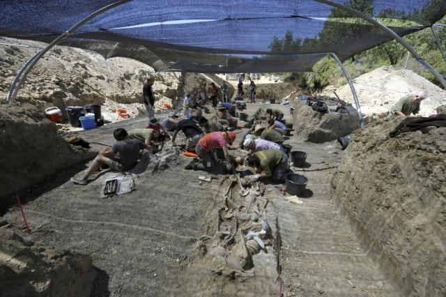 Miembros de la Asociación Española para la Recuperación de la Memoria Histórica (ARMH) exhuman restos de víctimas ejecutadas por Franco durante la Guerra Civil en Milagros, cerca de Burgos, norte de España, el 15 de julio de 2008