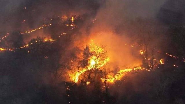 Dados do  Instituto Nacional de Pesquisas Espaciais  (Inpe) apontam que o  número de incêndios no Pantanal de 1.º de janeiro a 11 de setembro deste ano cresceu 334%  em relação ao mesmo período de 2018. O número saltou de 1.039 para4.515. A situação fez com que o governo de Mato Grosso do Sul decretasse  situação de emergência .  Leia também:  Incêndio atinge 5 mil hectares de reserva na Chapada dos Guimarães