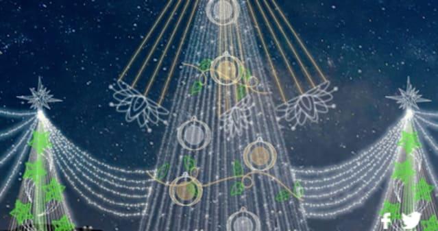 En el Parque El Tunal hay un imponente árbol de 56 metros de altura iluminado con más de 100 mil bombillos LED de bajo consumo, su base mide 20 metros de diámetro y su estrella 6 metros. ¡Imperdible!