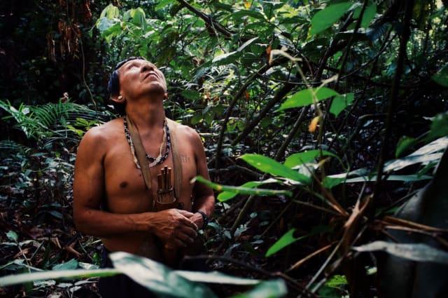 """El Papa invita a no ver desde lo alto a los indígenas y sus culturas, pero tampoco está de acuerdo con un indigenismo cerrado, sino a un encuentro intercultural (36-38). Incluso las """"culturas supuestamente más evolucionadas"""", observa, pueden aprender de los pueblos que """"desarrollaron un tesoro cultural estando enlazadas con la naturaleza"""". La diversidad, por lo tanto, no es """"una frontera"""", sino """"un puente"""", y dice no a un """"indigenismo completamente cerrado"""". La última parte del capítulo II está dedicada al tema """"culturas amenazadas, pueblos en riesgo"""" (39-40)."""
