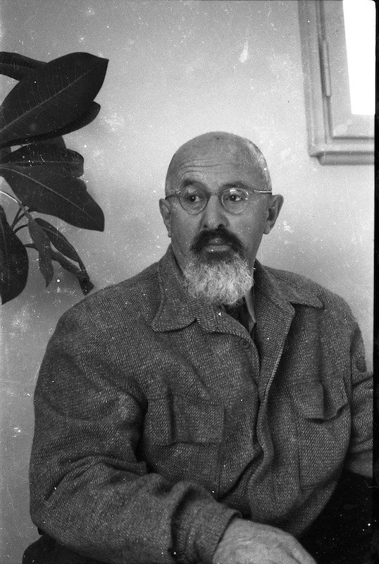 Photograph of Yitzhak Sadeh. Contrary to the above quote, the Dam HaMaccabim flower is not a low-lying plant but grows to a height of 40 centimeters.